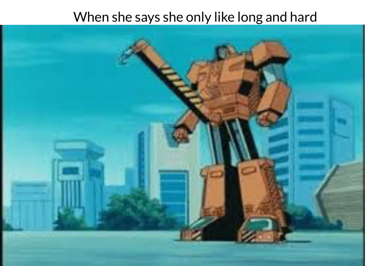 When she says she only like long and hard - meme
