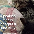 Speckles and her new bro Flick