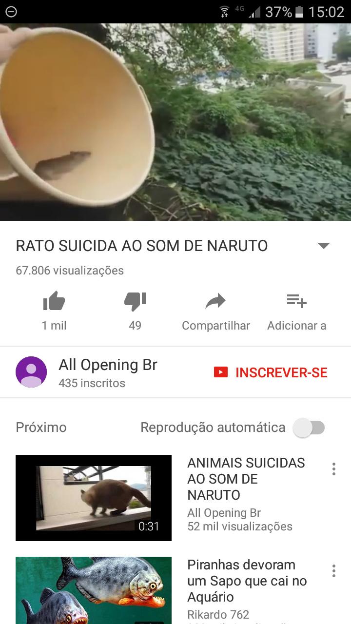 Brasil sendo brasil - meme