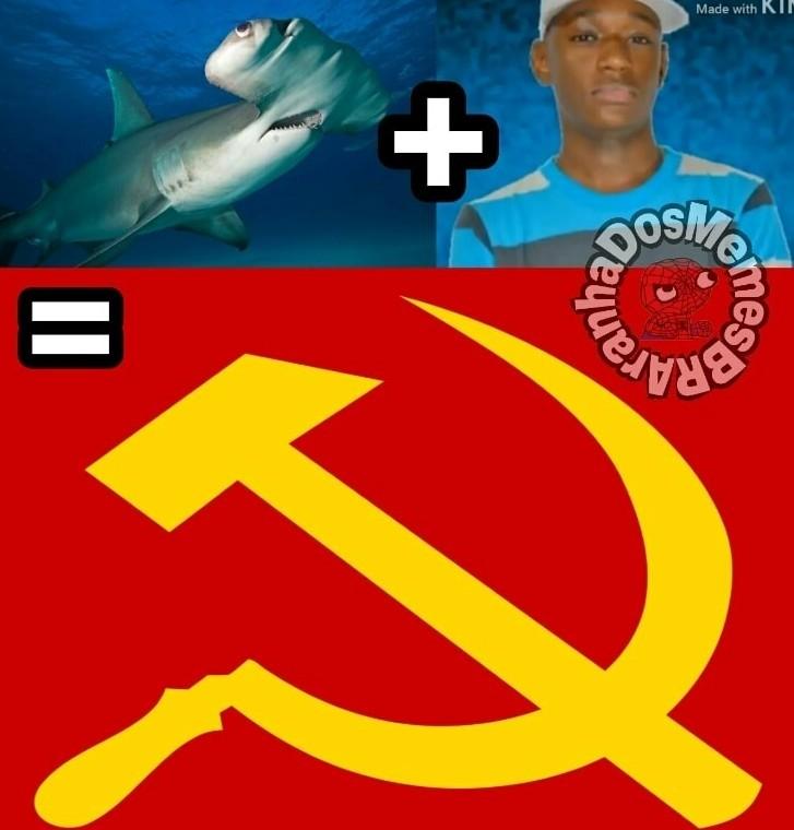 REPOST NA CARA (tubarão martelo + piroca de foice) - meme