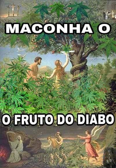 EMTEMDAO PAURQUE MALCOMHA EH DO SATA ANAIS - meme