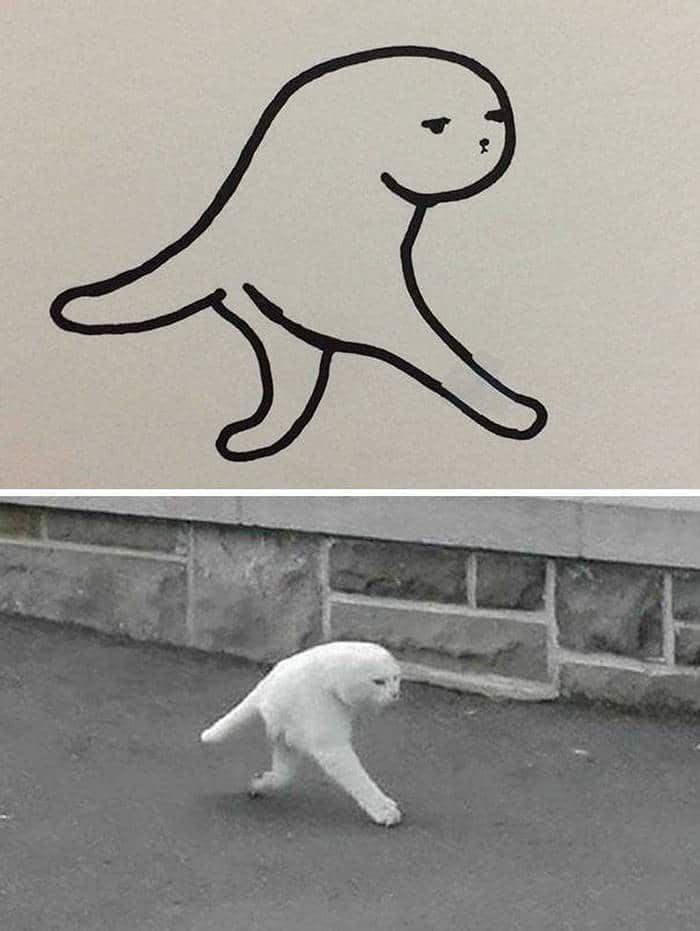 Ah yes, photoshop... - meme