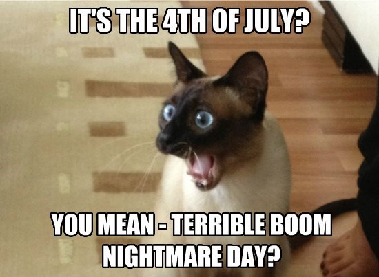 Happy 4th of July :) - meme