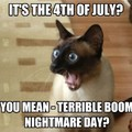 Happy 4th of July :)