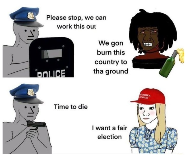 Police in a nutshell (also how the media acts too) - meme