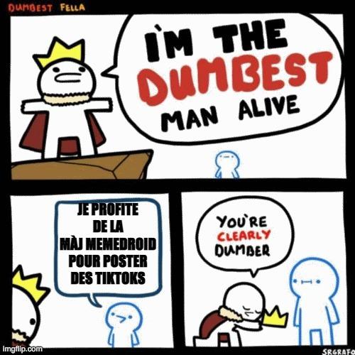 Albatard - meme