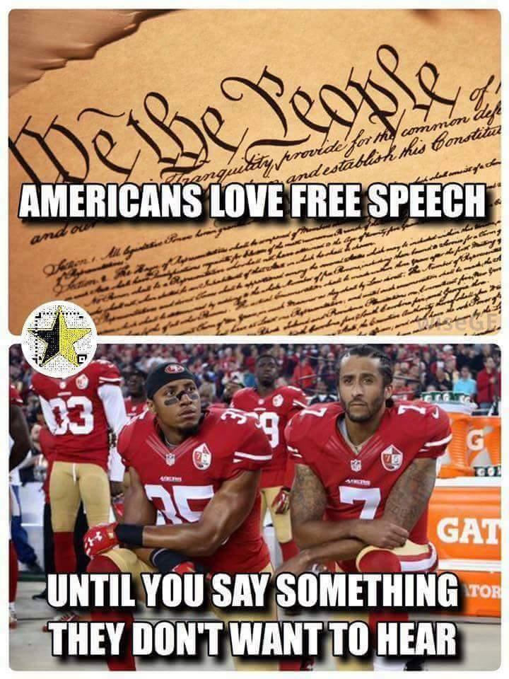 Pesky Constitution with its factual bias.... - meme