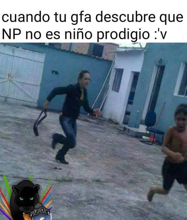 Naturaleza penales - meme