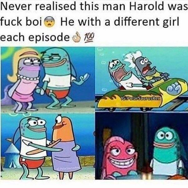 Harold the fuck boy - meme