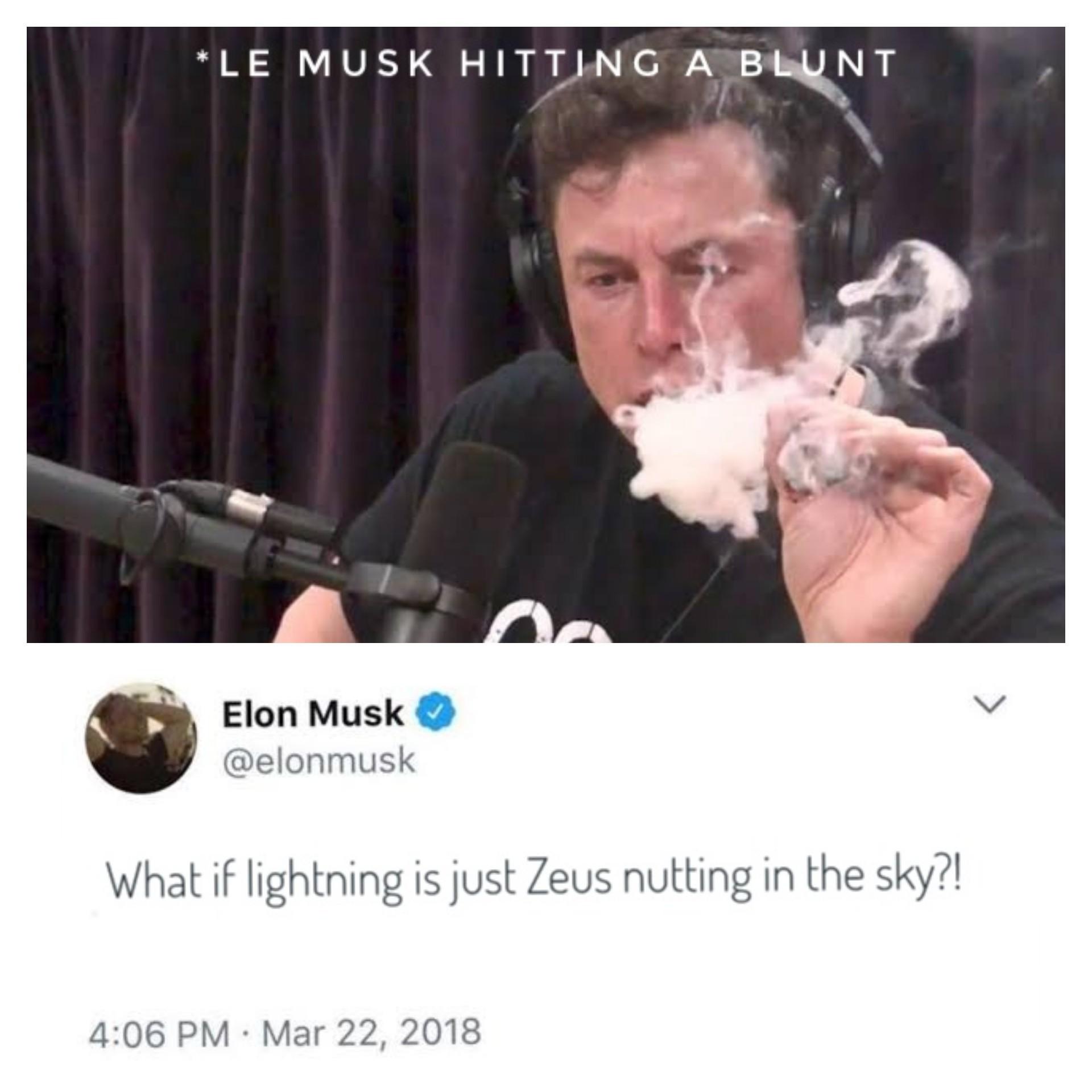 The blunt truth - meme