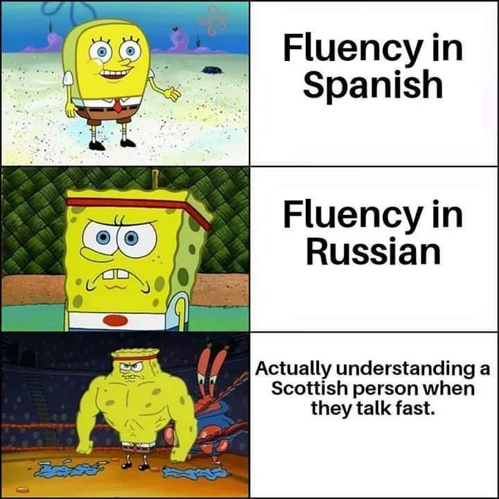 The expert - meme