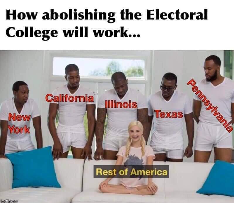 Electoral College - meme