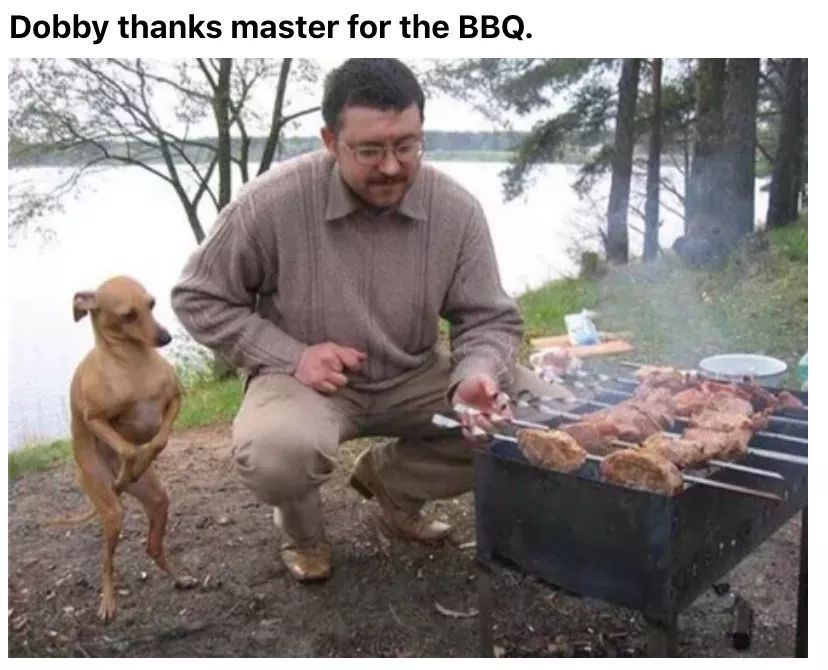 Dobby - meme