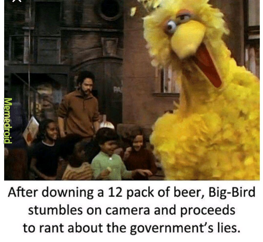 Big bird is best - meme