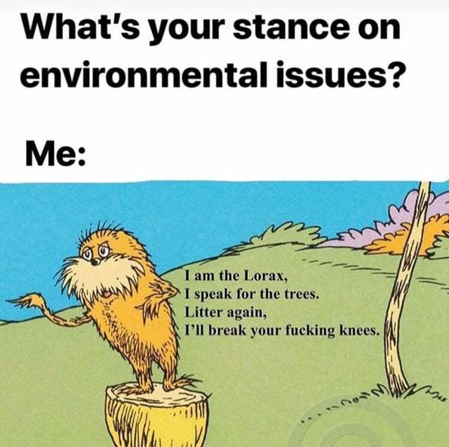 What's your stance on environmental issues? - meme