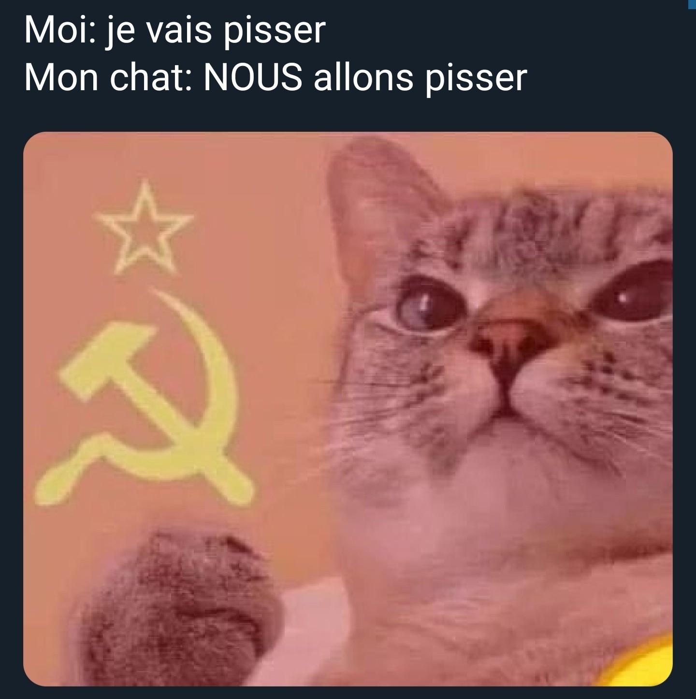 Ehey - meme