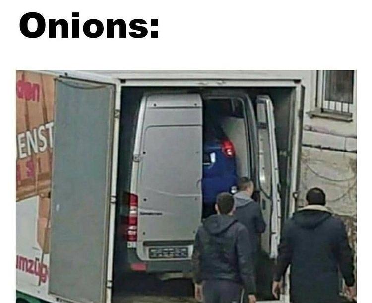 onions layers - meme