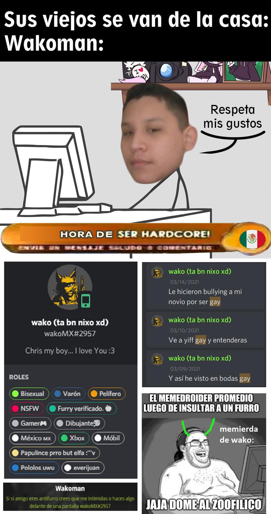 Furro, mexicano, respeta gustos, homosexual, pelotudo, amante del yiff, menor de 12 años, doble cara y edgy - meme