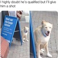 I trust dogs over people any day