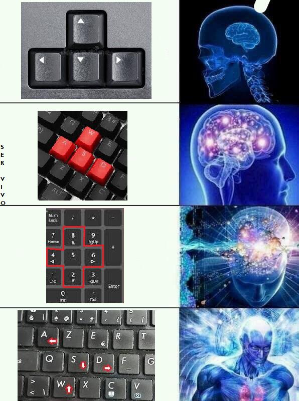 meme sem sentido