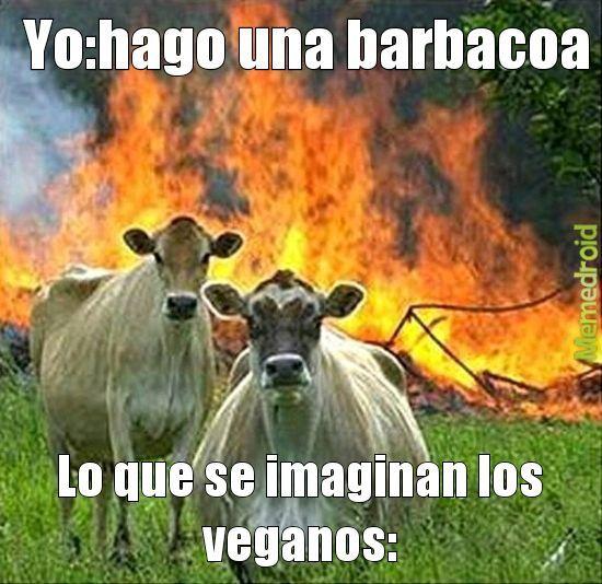 Vegano - meme
