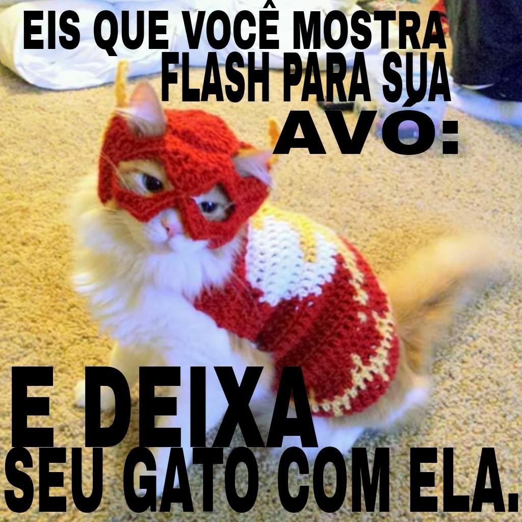 Flash gato - meme