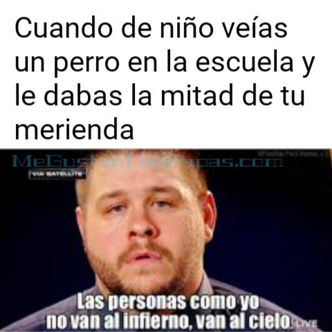 (introduzca gorrito con elice) - meme