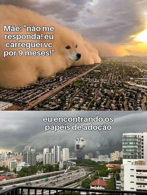 TRADUZIDO PODE? - meme