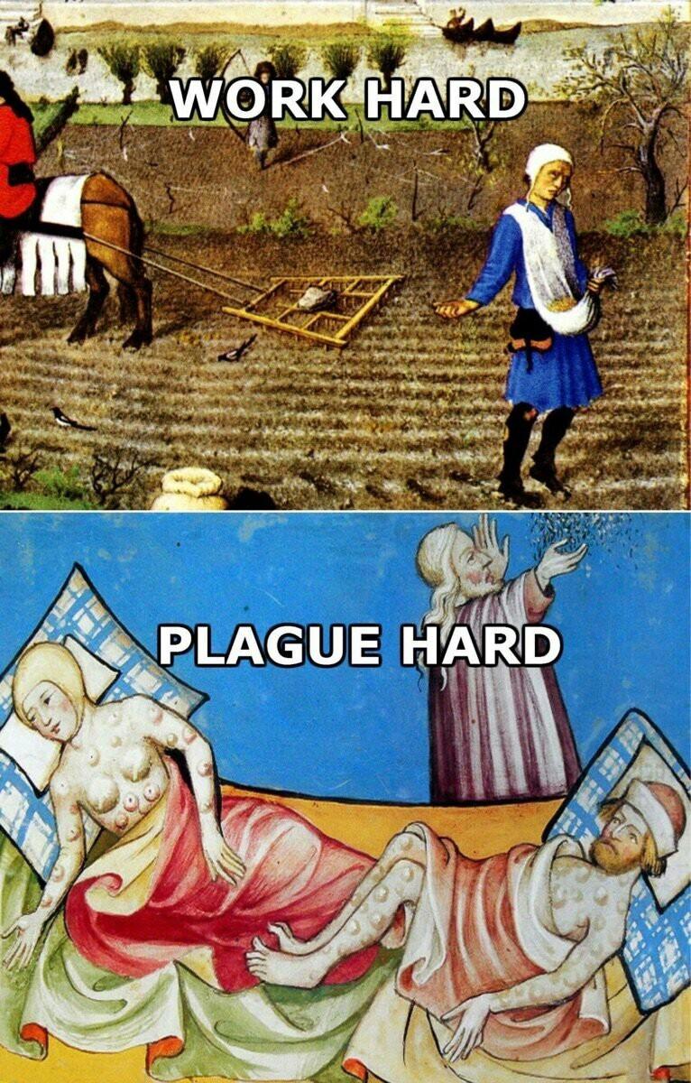 Dost thou plague? - meme