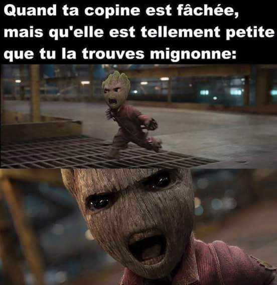 MiniGroot - meme