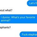Fuck Elephants