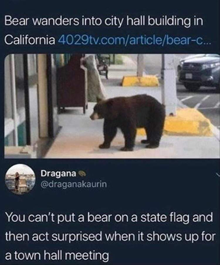 Bear With Me - meme