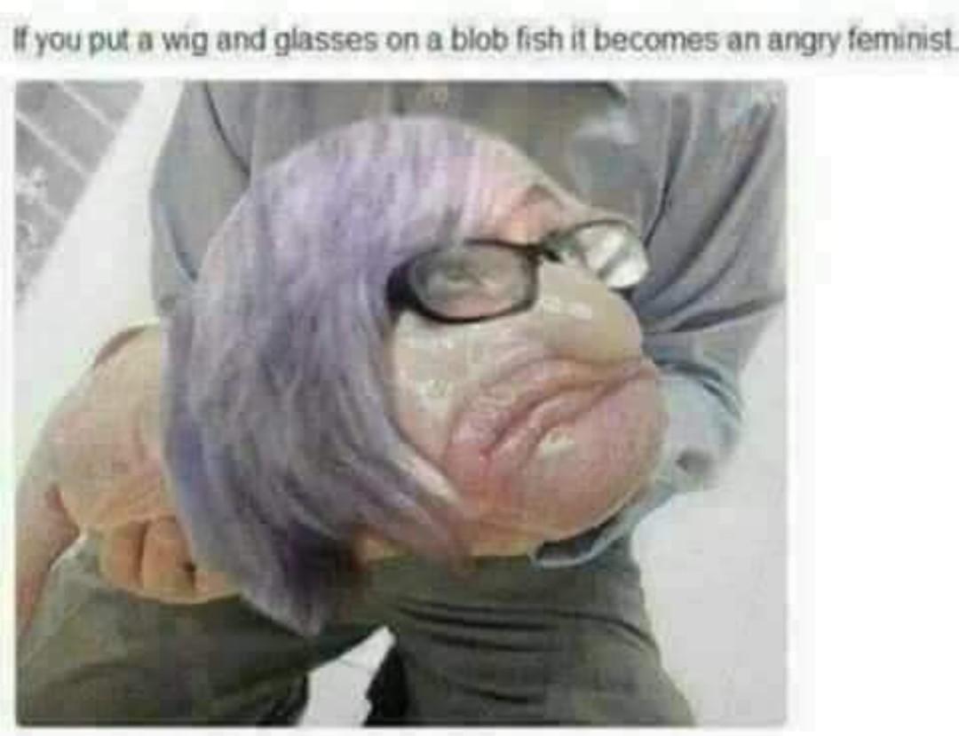 Karen fish - meme
