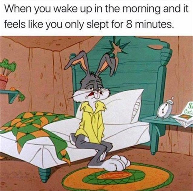 every Monday - meme