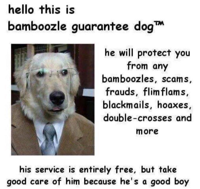No moar bamboozled - meme