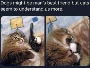 PULL IT - meme