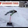 Canadian tire = store