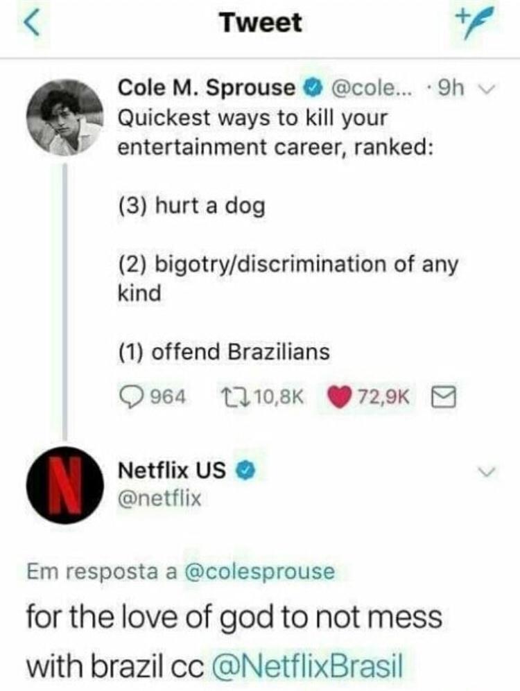 this is brazil mermao - meme