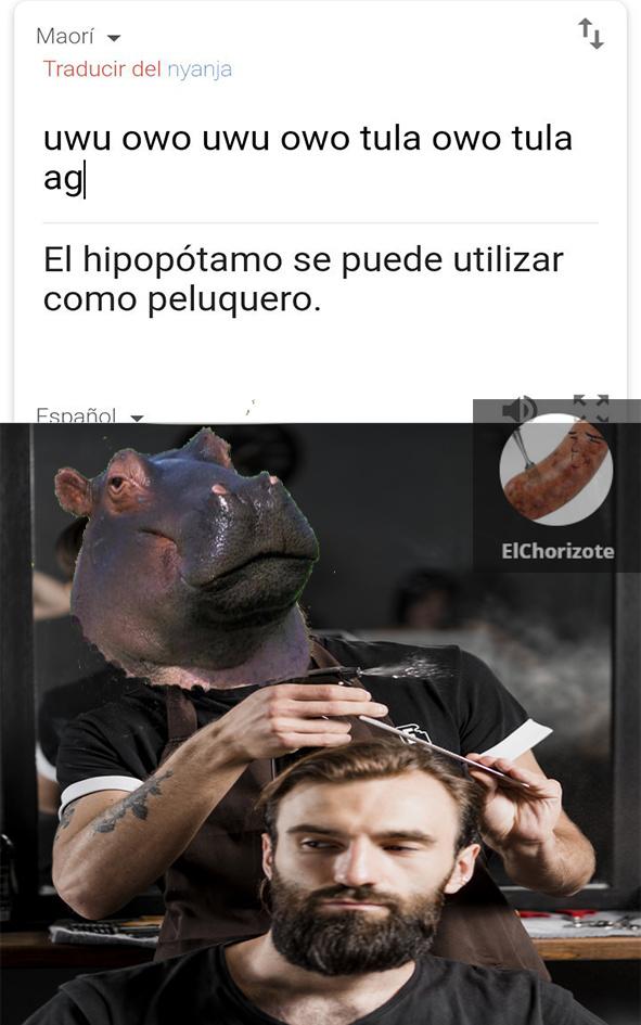 Primer meme ;)