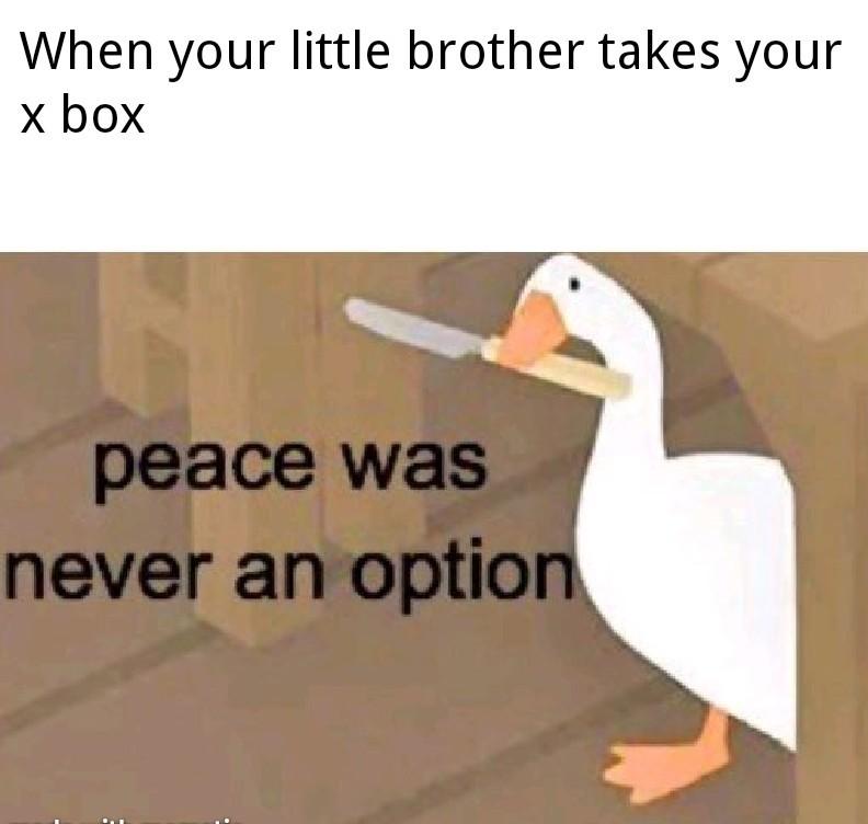 Little brother stank - meme