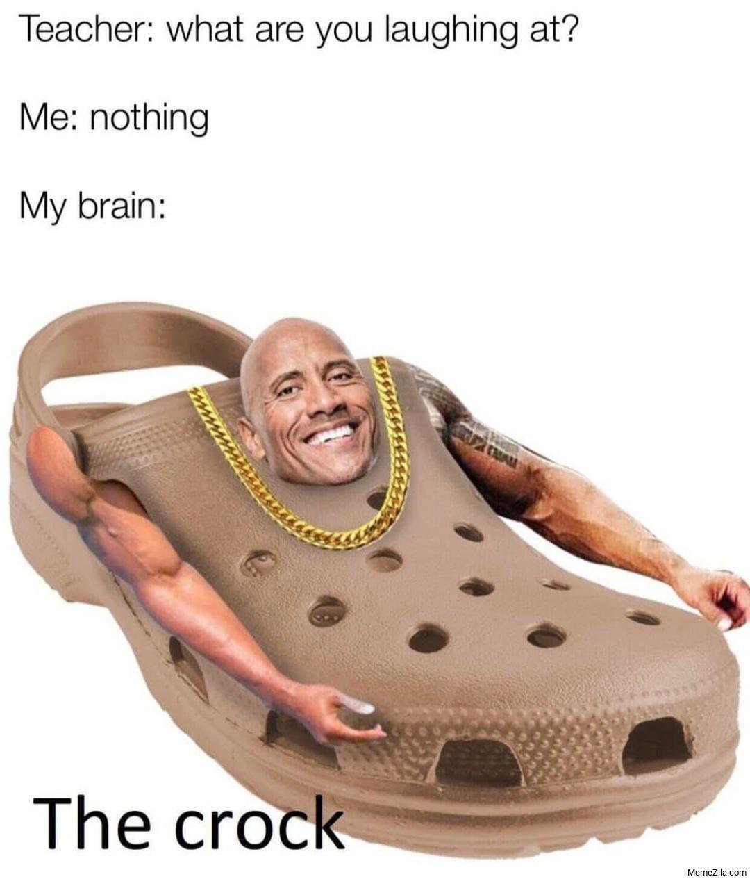 The Crock - meme