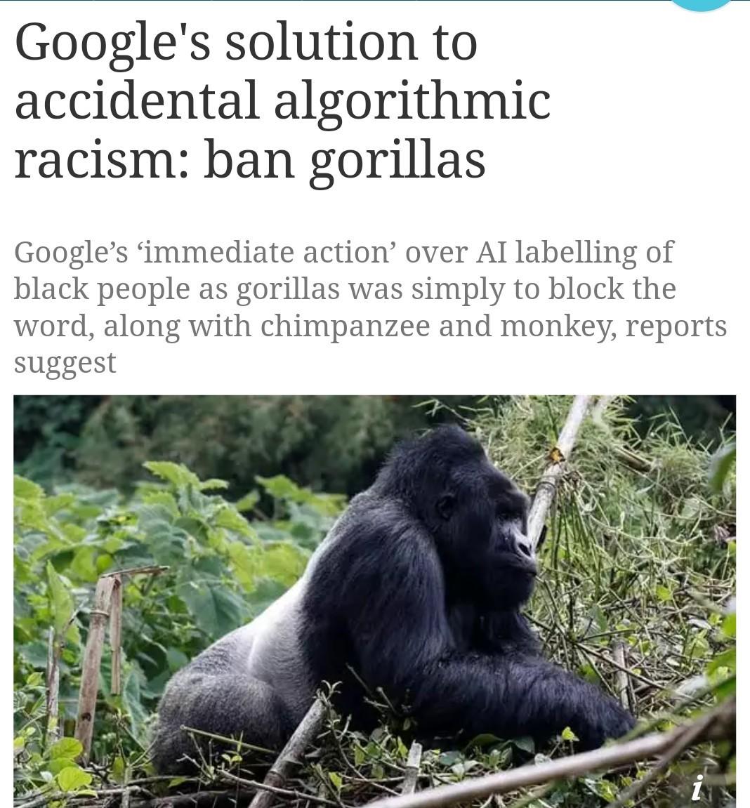 No offense to gorillas though - meme