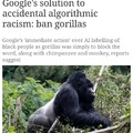 No offense to gorillas though