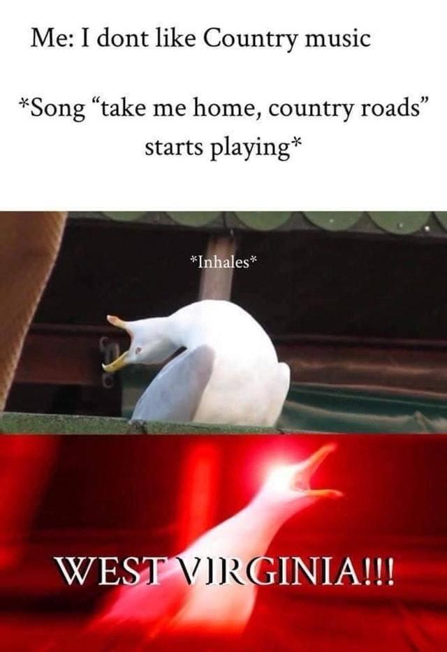 Country music - meme