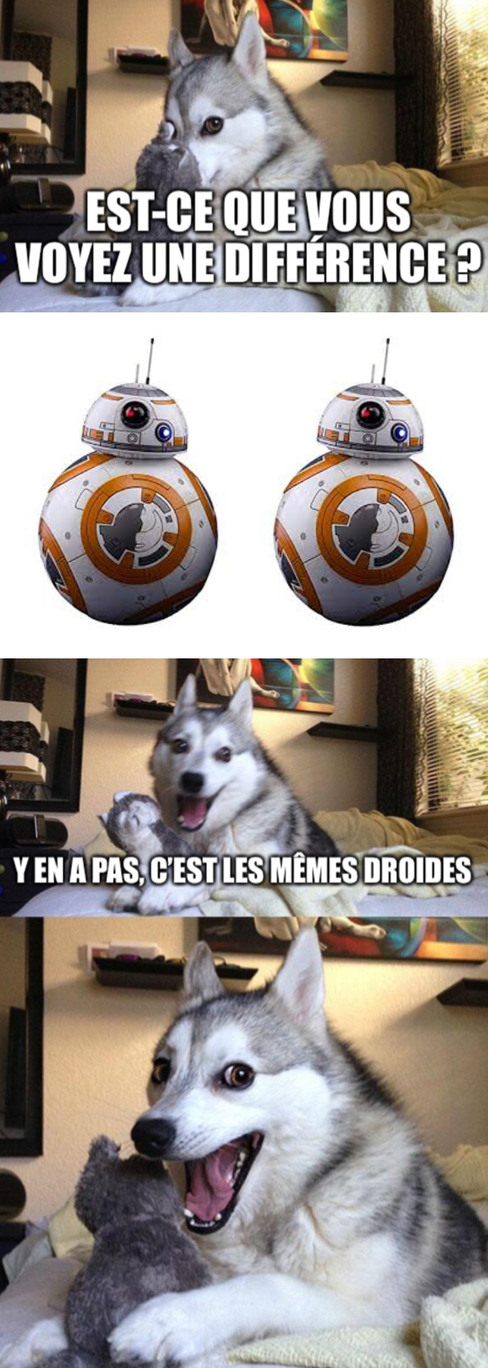 Blague nulle-2 - meme