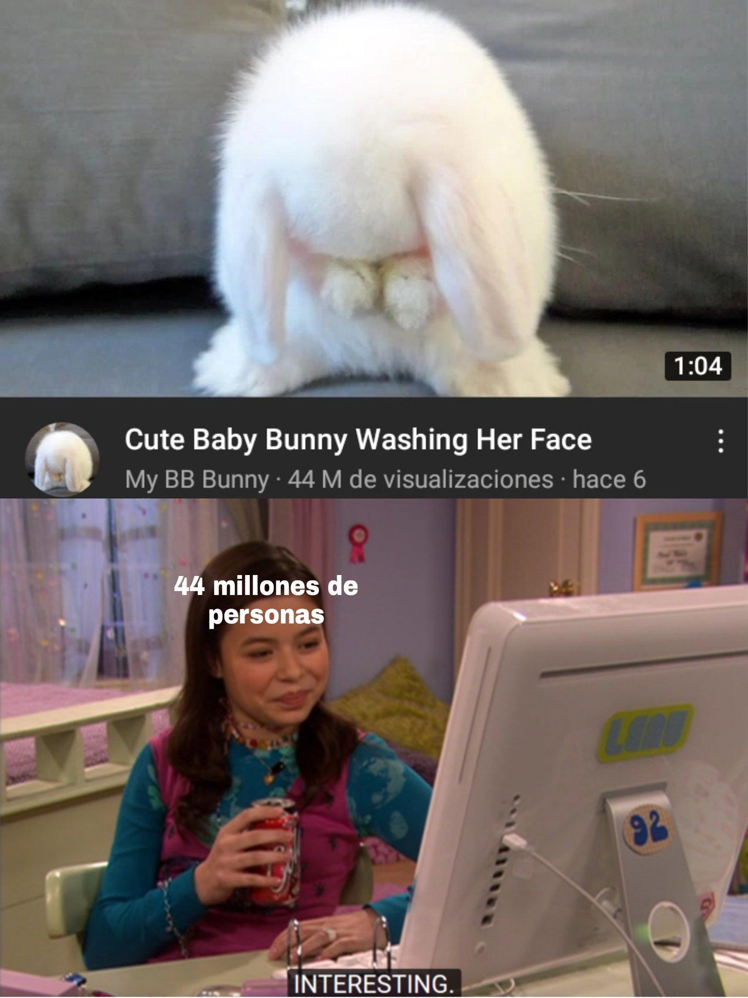 Esta lindo el conejo pero azopotamadre 44millones :0 - meme
