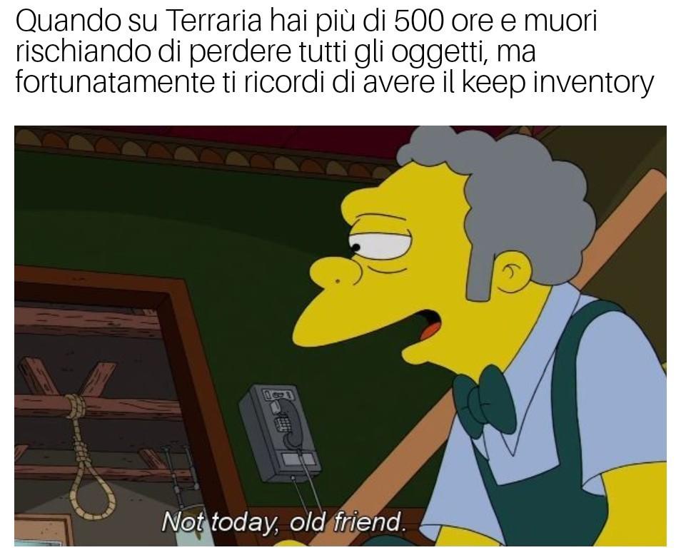 Sasino - meme