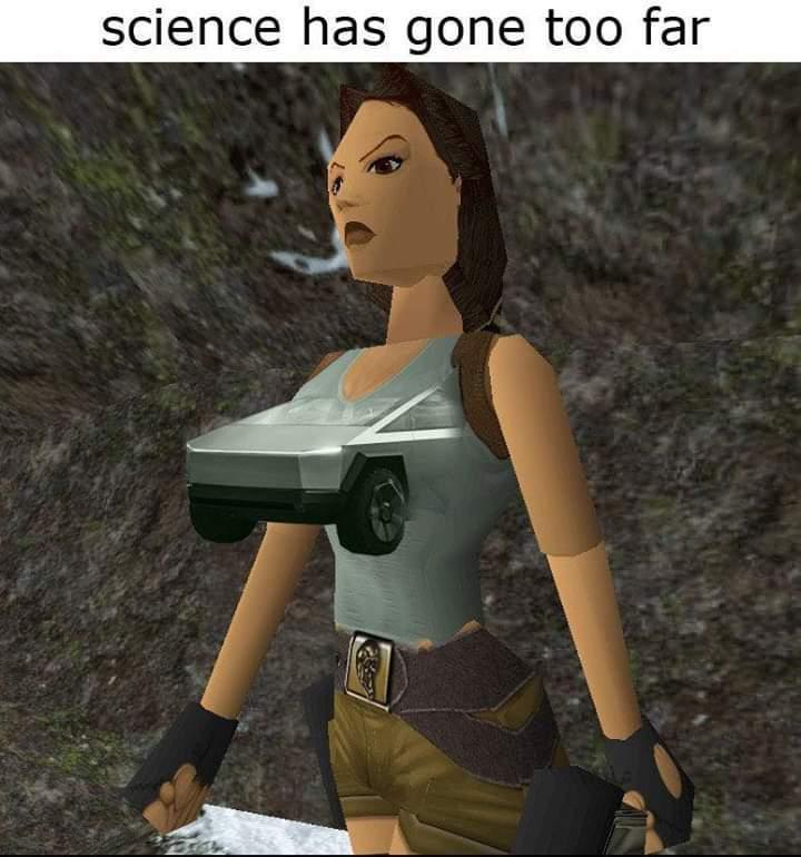 Tits are tits - meme
