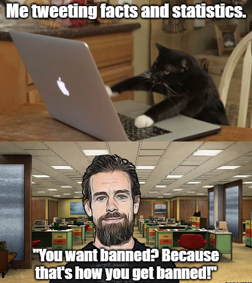 Twitter is trash and Jack is a cuck. - meme