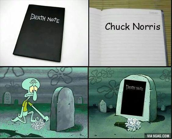 ninguem supera o chuck norris - meme